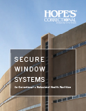 Secure Window Systems