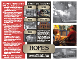 History of Hope's Windows